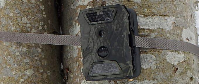 Best Trail Cameras for Deer Hunting